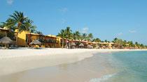 All Inclusive Tamarijn Aruba All Inclusive-hotellissa.