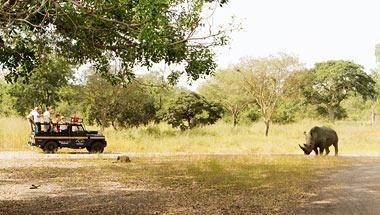 Kiertomatkat Gambiassa